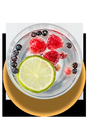 Copas en Rivas Gin Tonic La Tradicional